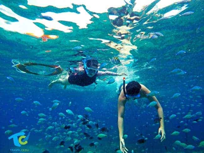 things to do in cebu pescador